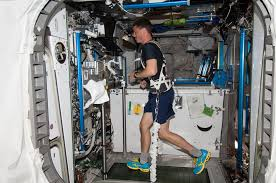But According To A Recent Study Published In The Journal Scientific Reports Thats Precisely What Astronauts Space Experience During Exercise And