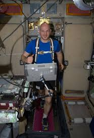 Alexander Exercising In Space