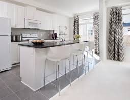 Trendy Galley Kitchen Photo In Ottawa With A Double Bowl Sink Recessed Panel