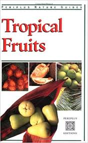 Tropical Fruits Periplus Nature Guides Wendy Hutton 9789625931357 Amazon Books