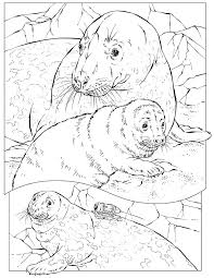 National Geographic Kids Coloring Pages