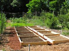 Greenes Fence Raised Garden Bed by Franks Aquaponics Gallery Garden Pinterest Discover Best