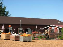 Best Pumpkin Patch Snohomish County by Perfect Pumpkin Patch Review Of Craven Farm Snohomish Wa