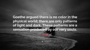 "John Gage Quote ""Goethe argued there is no color in the physical"