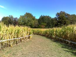 Pumpkin Patches Maryland by 10 Picture Perfect Fall Day Trips To Take In Maryland