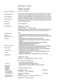 Sample Resume Qualifications Maths Teacher Template Skills For Computer Hardware Professional
