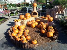 Alameda Pumpkin Patch 2015 by October 2010 Encinal Nursery