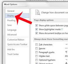 Click Display In The Left Column Of Word Options Window
