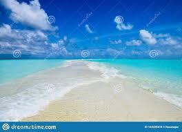 100 Kuramathi Island Maldives Sandbank At Resort In Stock Photo