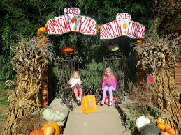The Great Pumpkin Patch Arthur Il by The Mcelroy Family