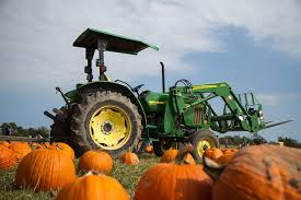 Pumpkin Patches Near Dallas Tx 2015 by Texas Pumpkin Patches Funtober
