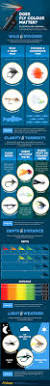 Sink Tip Fly Line Uk by 74 Best Fly Fishing Flies Images On Pinterest Fly Fishing Flies