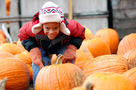 Pumpkin Patch Issaquah by Explore The Best Pumpkin Patches Near Seattle
