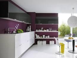 et cuisine cuisine mauve et blanche spacieuse cuisines en couleurs violet
