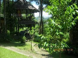 100 House Earth Book Amys Hotel Pai Thailand