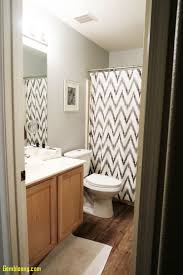 Bathroom: Bathroom Decorating Ideas Beautiful Brilliant Ideas Of 50 ... Lighting Ideas Rustic Bathroom Fresh Guest Makeover Reveal Home How To Clean And Ppare For Guests Decorating Small Tile House Decor Thrghout Guess 23 Amazing Half On Coastal Living Dream Decorate With Me 2017 Guest Bathroom Tour Decorating Ideas With Wallpaper To Photo Gallery The Minimalist Nyc Marvellous For Guest Bathroom Ideas Sarah Bnard Design Story