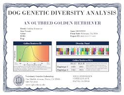 Genetic Diversity in Golden Retrievers