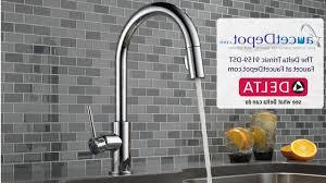 Delta Trinsic Kitchen Faucet Black by Delta 1159lfar Trinsic Single Handle Kitchen Faucet In Attic