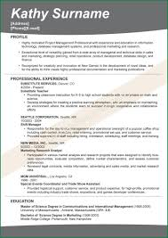 Attractive Resume Profile Headline Examples Image Example