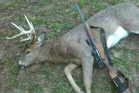 turning shed antlers into skinning shed bucks qdma