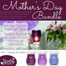 8 best Scentsy fun images on Pinterest
