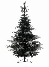 6ft Slim Black Christmas Tree by Christmas 7ft Bayberry Spruce Slim Feel Real Artificial