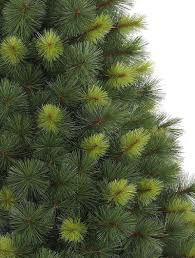 Artificial Douglas Fir Christmas Tree Unlit by Scotch Pine Artificial Christmas Tree Balsam Hill