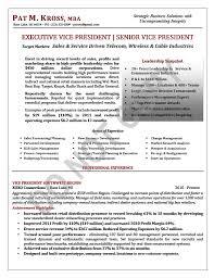 EVP Resume Sample VP Executive Vice President