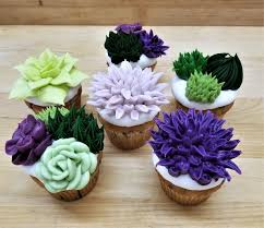 Succulent Cupcakes Wedding Shower Birthday Garden Party Nature Rustic