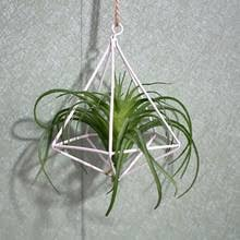 Flower Pots Planters Wall Hanging Tillandsia Air Plants Rack Rustic Metal Iron Wrought Geometric Himmeli