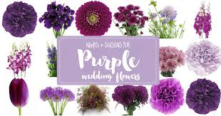 Purple Wedding Flowers Names And Seasons