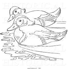 Pin Mandarin Duck Clipart Outline 9