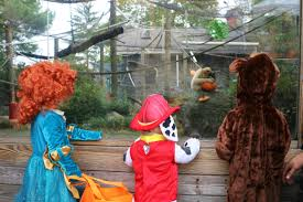 Toledo Zoo Halloween Events 2017 by Roger Williams Park Zoo