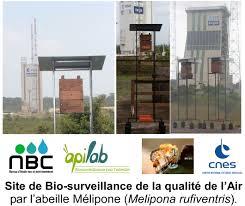 bureau d ude environnement lyon nbc bureau d etude eau et environnement