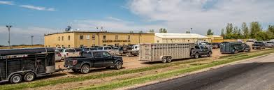 Saskatoon Livestock Sales Ltd. Trucking The Worlds Best Photos Of 389 And Livestock Flickr Hive Mind About Metzger Agricultural Exemptions Instated For Regulations Pork Firms Worried Electronic Logging Device Could Hurt Henderson Jobs Otr Long Haul Truck Drivers West Land Cattle Hauler Jessica Lorees 2003 Pete 379 Livestockcattle Haulers Sale Llc Kenworth T800 With 4 Axle Tra Truck Spill Cleaned Up A Lot Help Krvn Radio Australian Livestock Rural Transporters Association
