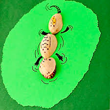Pistachio Shell Animals Whimsical Cards