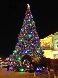 Christmas Tree Inn Pigeon Forge Tn by 174 Best Smokies Images On Pinterest Mountains Pigeon Forge Tn