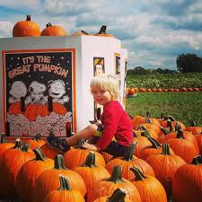When Does Carmichaels Pumpkin Patch Open by Prairie View Farms Produce Home Facebook