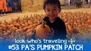 Pumpkin Patch Santa Barbara Ca by Pa U0027s Pumpkin Patch Long Beach Look Who U0027s Traveling Youtube