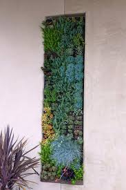 Large Wall Landscape Contemporary With Living Succulent Decor