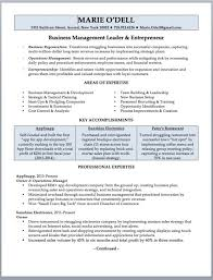 Small Business Owner Resume Sample 12 Smart Inspiration Pretentious 6 For