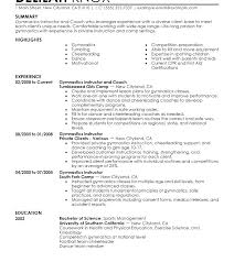 Instructor Resume Sample With No Example