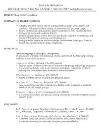 Great Resumes Samples Example Of A Resume