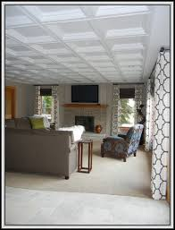 Acoustic Ceiling Tiles Home Depot by Acoustic Drop Ceiling Tiles Home Depot Tiles Home Design Ideas