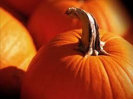 Pumpkin Festival Ohio by Fall Festivals Seasonal Happenings In Central Ohio Lifestyle
