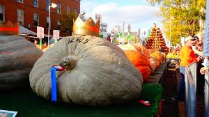 Pumpkin Festival Circleville Ohio 2 by The Very Best Fall Festivals Our Favorite Picks For 2016