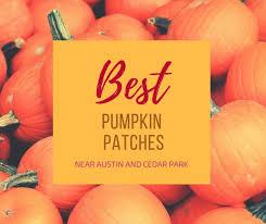 Pumpkin Patch Austin Tx 2015 by Best Pumpkin Patches Cedar Park Texas Living