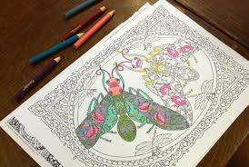 Public Library Holds Monthly Coloring Book Clubs The Event