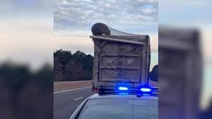 100 Trash Truck Video For Kids VIDEO Bear Trapped On Garbage Truck Traveling Down NC Highway