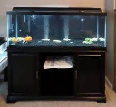 90 gallon fish tank archives myaquarium
